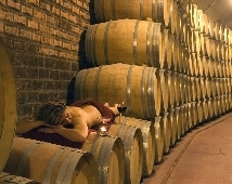 Oferta Viaje Hotel Escapada La Casa del Cofrade + Visita Museo del Vino Vivanco