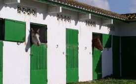 Oferta Viaje Hotel Escapada Cortijo Las Piñas + Kitesurf en Tarifa  tres hora / día