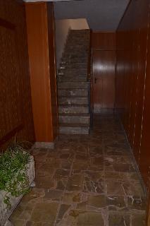 Oferta Viaje Hotel Escapada Charly's + Entradas a Naturaleza Parc