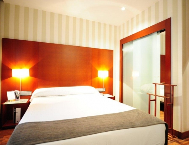 Oferta Viaje Hotel Escapada Zenit Malaga + Entradas Combinada Museo Picasso