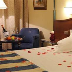 Oferta Viaje Hotel Hotel Beatriz Toledo Auditorium & Spa ****