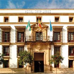Oferta Viaje Hotel Hotel TRYP Jerez ****