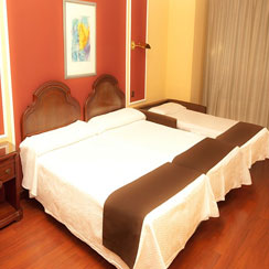 Oferta Viaje Hotel Hotel Sercotel Corona de Castilla ****