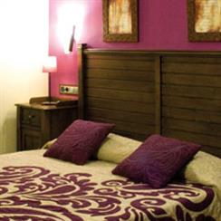 Oferta Viaje Hotel Hotel Enoturismo Mainetes ***