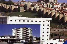 Oferta Viaje Hotel Hotel Cuatro Postes en Avila