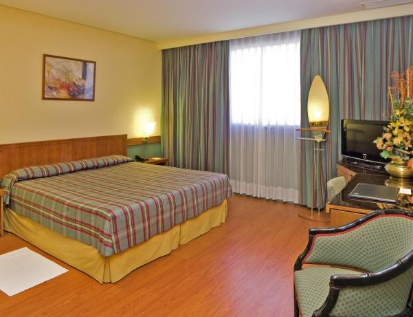 Oferta Viaje Hotel Hotel Carlton Rioja en Logroño