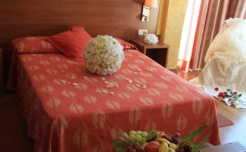 Oferta Viaje Hotel Hotel Amic Horizonte en Palma de Mallorca