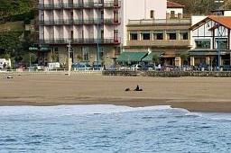 Oferta Viaje Hotel Hotel Petit Palace Tamarises en Getxo