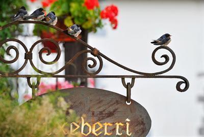 Oferta Viaje Hotel Hotel Etxeberri Ostatua en Arribe-Atallu