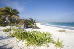 Oferta Viaje Hotel Viaje Combinado Nueva York y Riviera Maya/Cancún