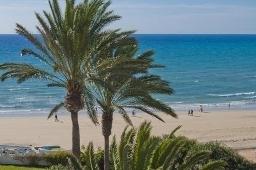 Oferta Viaje Hotel Hotel SBH Costa Calma Palace Thalasso & Spa en Costa Calma