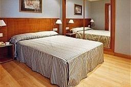 Oferta Viaje Hotel Hotel Zenit Logroño en Logroño