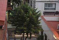 Oferta Viaje Hotel Hotel Puerto Azul en Puerto de la Cruz