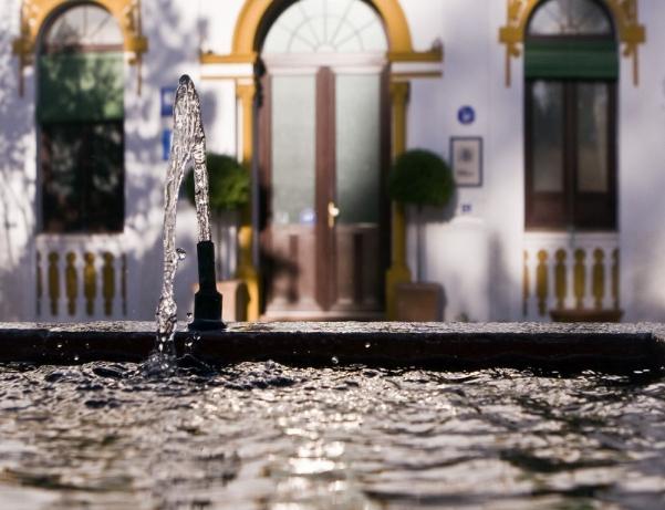 Oferta Viaje Hotel Hotel El Raposo en Puebla de Sancho Pérez