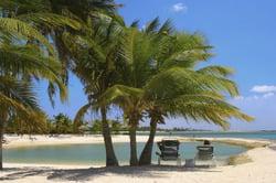Oferta Viaje Hotel Viaje Descubre Aruba