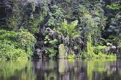 Oferta Viaje Hotel Viaje Costa Rica - Aventura y Naturaleza