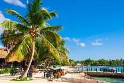Oferta Viaje Hotel Viaje Punta Cana - Puente de Diciembre
