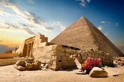 Oferta Viaje Hotel Viaje Egipto Fascinante: Cairo y Nilo con Visitas