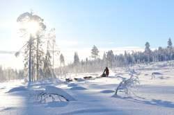 Oferta Viaje Hotel Viaje Reyes en Laponia - Rovaniemi