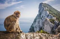 Oferta Viaje Hotel Viaje Escapada a Gibraltar