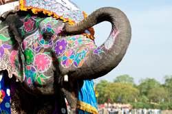 Oferta Viaje Hotel Viaje India Fascinante - Puente de Diciembre