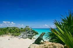 Oferta Viaje Hotel Viaje Riviera Maya