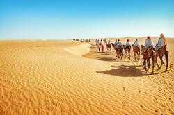 Oferta Viaje Hotel Viaje Marruecos: Kasbahs y Desierto  - Puente de Diciembre