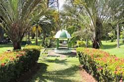 Oferta Viaje Hotel Viaje Descubre San Vicente y Las Granadinas