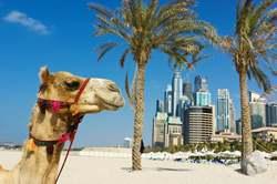 Oferta Viaje Hotel Viaje Dubái al Completo - Puente de Diciembre