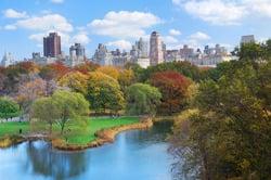 Oferta Viaje Hotel Viaje Nueva York - Puente de Diciembre