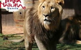 Oferta Viaje Hotel Oferta Terra Natura Murcia Parque Zoológico y Acuático