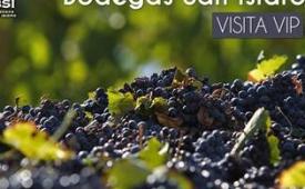 Oferta Viaje Hotel Bodegas San Isidro - Visita Vip