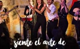 Oferta Viaje Hotel Siente el Arte de la Rumba Catalana