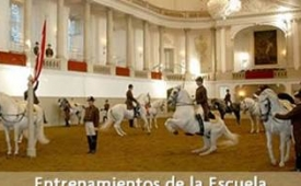 Oferta Viaje Hotel Sesión de entrenamientos de la Escuela Española de Equitación en Viena