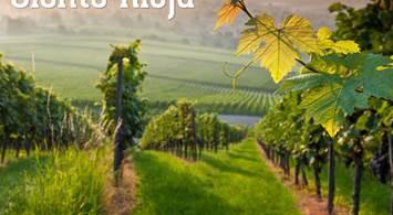 Oferta Viaje Hotel Siente Rioja - Experiencia en Bodegas