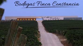 Oferta Viaje Hotel Bodegas Finca Constancia