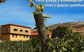 Oferta Viaje Hotel Valdubón – Visita guiada y armonización de vinos y quesos castellanos