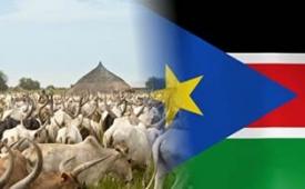 Oferta Viaje Hotel Visado Sudán del Sur