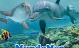 Oferta Viaje Hotel Mundomar - Oferta Delfín, tu entrada a un precio muy especial