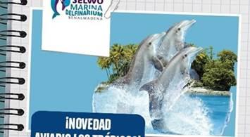 Oferta Viaje Hotel Selwo Marina Delfinarium - Entrada Individual