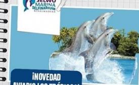 Oferta Viaje Hotel Selwo Marina Delfinarium + Teleférico Benalmadena