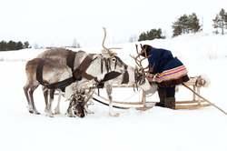 Oferta Viaje Hotel Viaje Conoce a Santa Claus