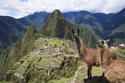 Oferta Viaje Hotel Viaje Estrellas de Sudamérica - Brasil, Perú y Ecuador