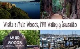 Oferta Viaje Hotel Visita a Muir Woods, Mill Valley y Sausalito