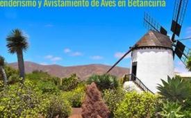 Oferta Viaje Hotel Fuerteventura - Senderismo y Avistamiento de Aves en Betancuria