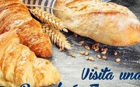 Oferta Viaje Hotel Visita de una panadería francesa