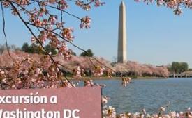 Oferta Viaje Hotel Excursión a Washington DC desde Nueva York