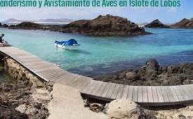 Oferta Viaje Hotel Fuerteventura - Senderismo y Avistamiento de Aves en Islote de Lobos